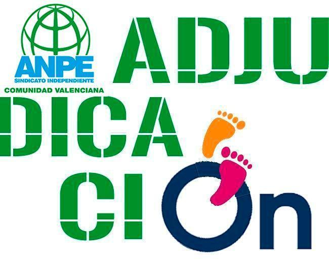 adjudicaciones-anpe